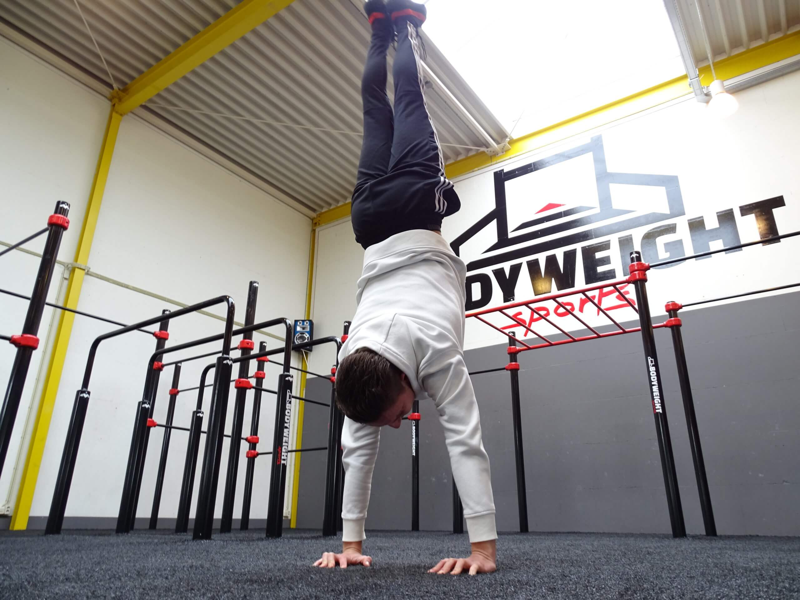 Gratis bodyweight e-books